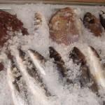 """fish-restaurant-ulcinj.jpg"""
