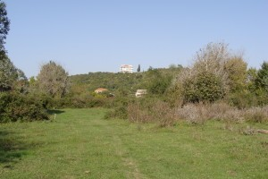 """land -on-the-bojana-river-for-sale.jpg"""