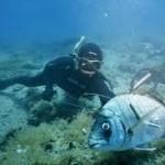 spearfishing montenegro