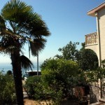 house--sale-ulcinj.jpg